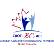 Canadian Association of Occupational Therapist