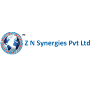 Z N Synergies Private Limited